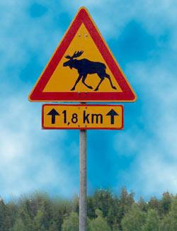 Näitä liikennemerkkäjä kannattaa seurata tarkasti!